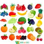 Наклейка фрукты в столовую