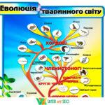 Наклейка эволюция животного мира 2 – хордовые членистоногие