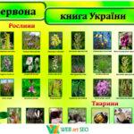 Наклейка на стіну червона книга України 2