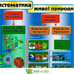 Наклейка на стіну систематика живої природи 2