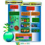 Наліпка систематика живої природи 2